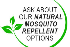 Best Backyard Mosquito Control Services