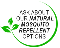 Ask about our natural mosquito repellent options